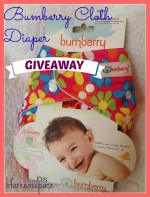 Bumberry Cloth Diaper (Giveaway)
