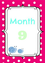 The Ninth Month