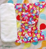 Guest Post: Bumberry Pocket Diaper Review