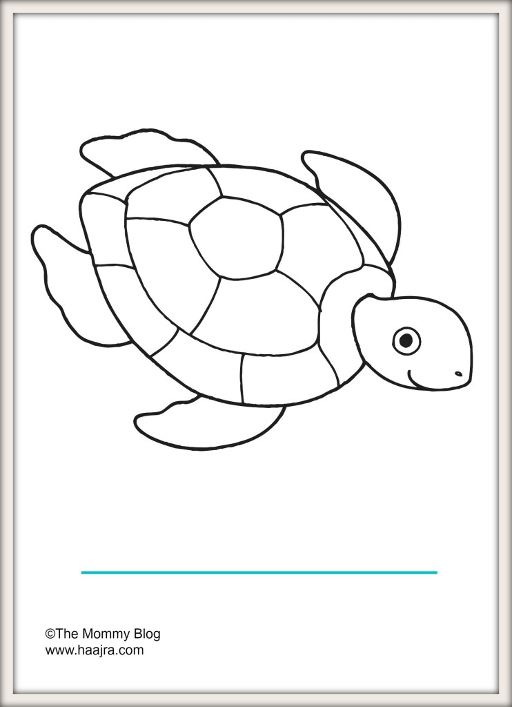 sea animals - turtle preschool colouring pages printable free