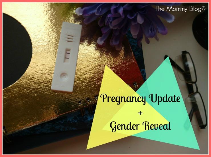 Pregnancy Update + Gender Reveal