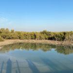 A Trip To Purple Island Al Khor | Places To Visit Qatar